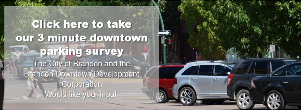 Downtown Parking Survey